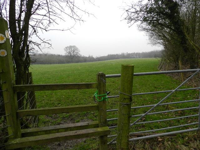 Padlocked gate by Goosehill Wood