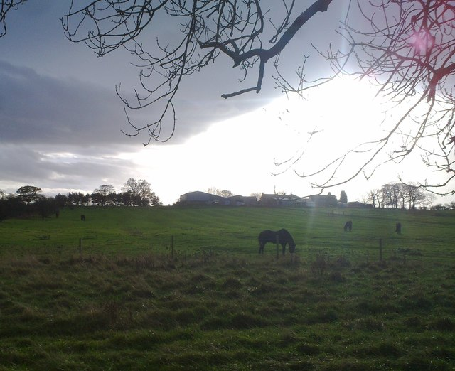 Looking over towards Mill Hill Farm