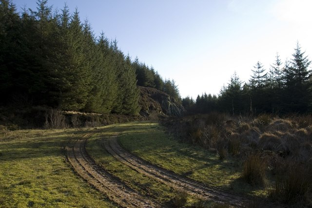Going round the bend, Cornabus Forest, Islay