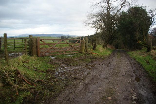 Ingthorpe Lane