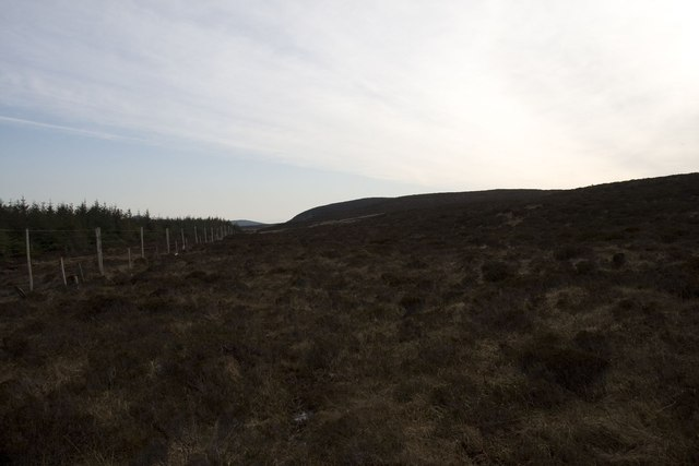Moorland on edge of Cornabus Forest, Islay