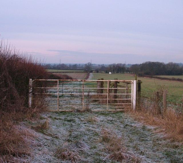 Frozen February fields