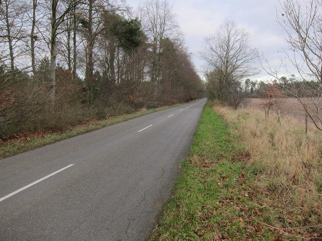 Minor road across Cranwich Heath