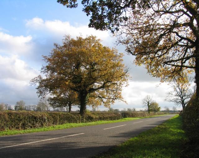 Ashby Road towards Walcote