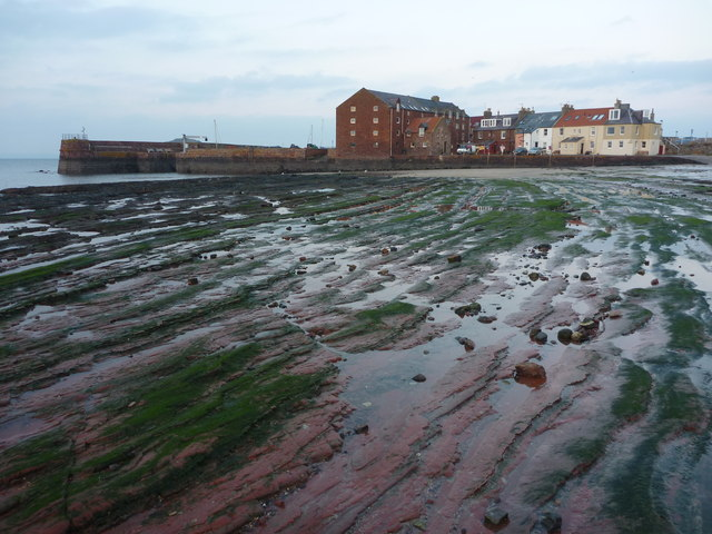 Coastal East Lothian : Stone Grooves at North Berwick