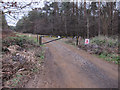 TL7691 : Restricted byway by Hugh Venables