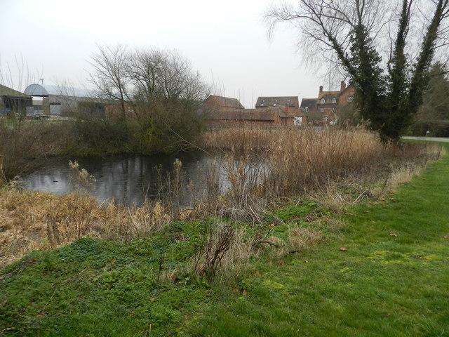 Pond and farm buildings, Lower Goosehill Farm
