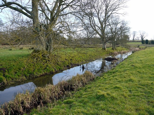 River Pont west of Stamfordham