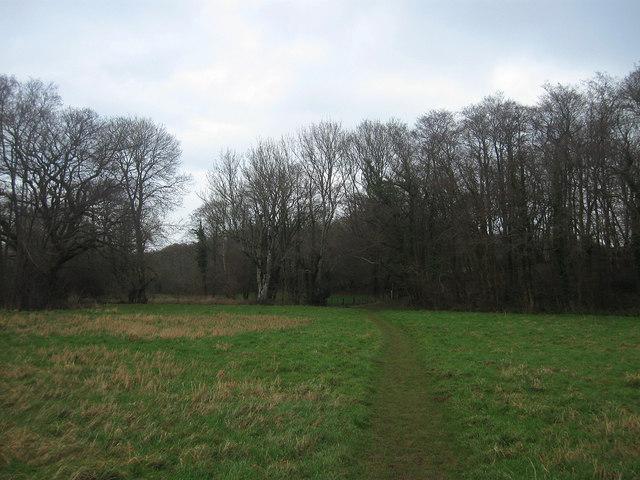 Footway Brook