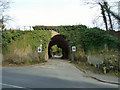 TQ4270 : Railway bridge over Southill Road by Robin Webster