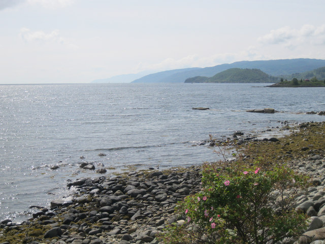 Loch Fyne coastline