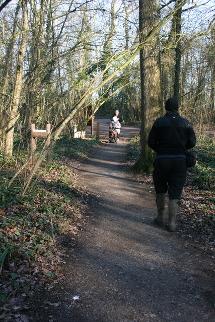 Wheelchair access at Swell Wood