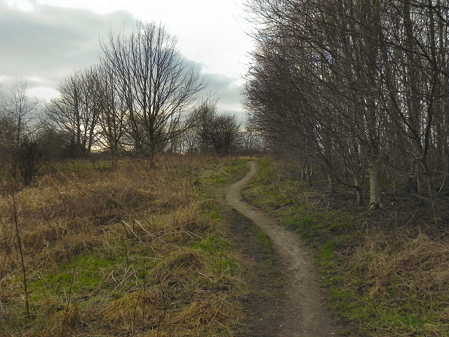 Path from Coniston Road