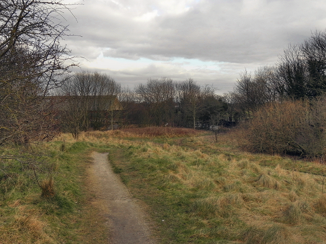 Path Behind Lansdowne Road