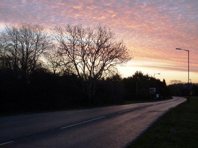 Road to Brixham by Churston Common