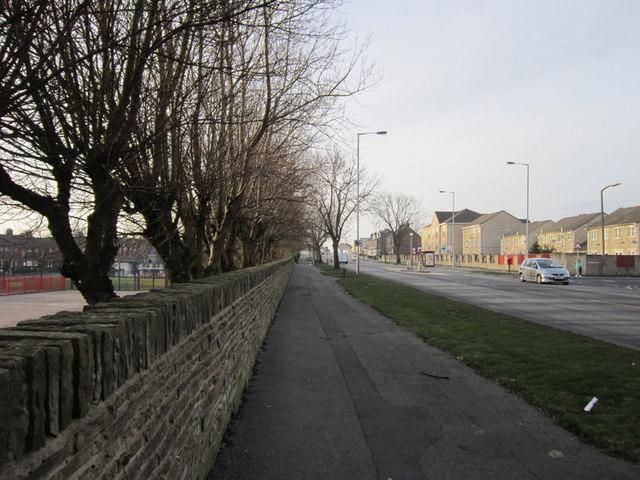 Dick Lane, Tyersal