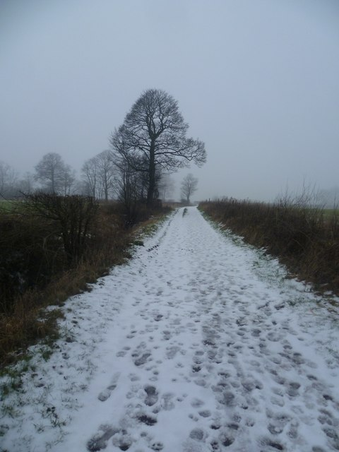 Track between Boothstown & Higher Green