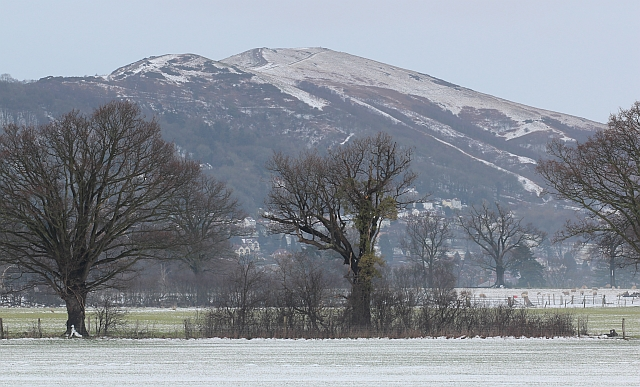 Worcestershire Beacon in the February snow
