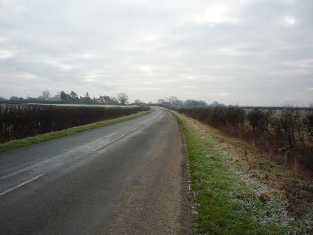 Colton Lane