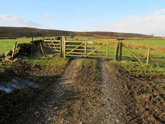 Gate on Track from Summerscales