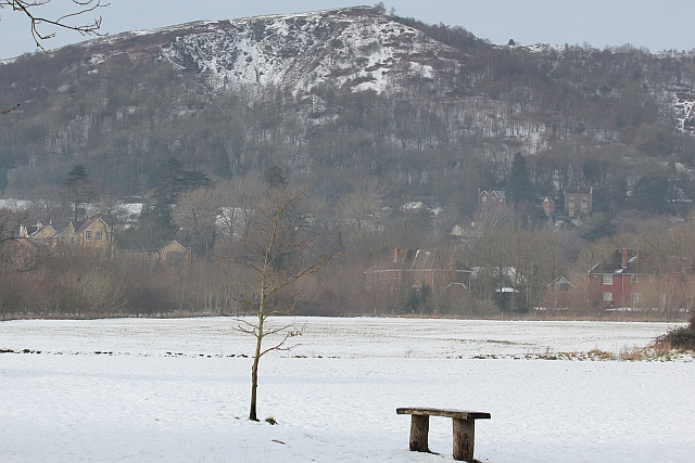 Short's Meadow in the February snow