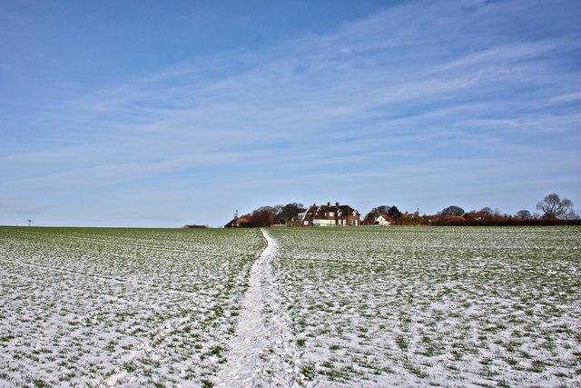 Winter Field, East Harlsey