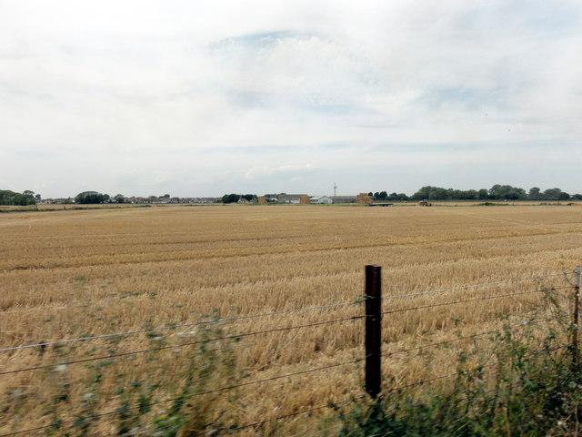 New Romney, Warren Farm