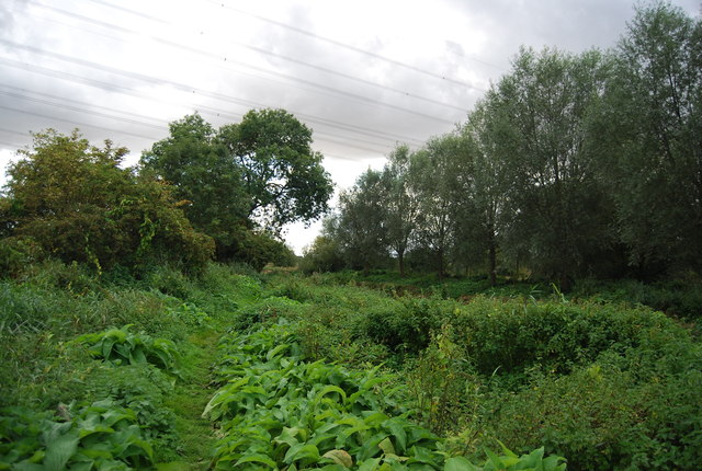 Gipping Valley River Path