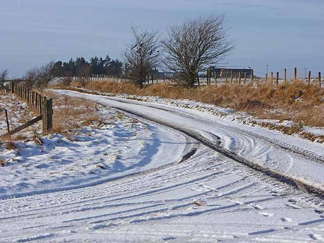 Snowbound lane near Rushey Law Farm