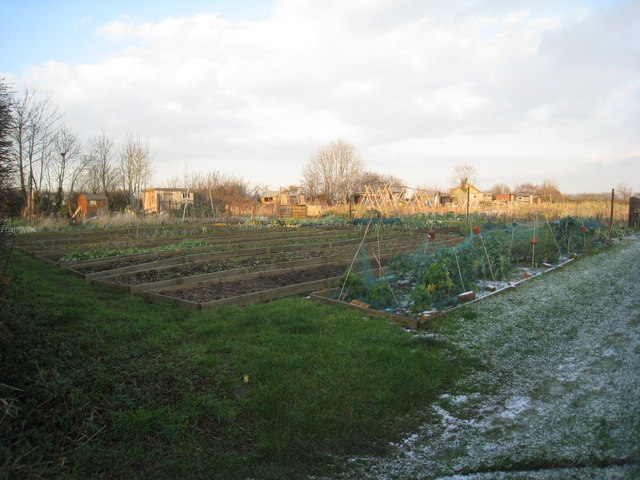 Allotments at Harby