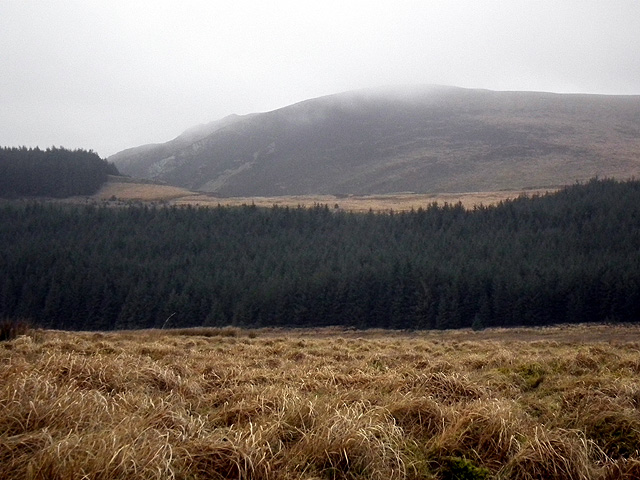 Craig y Pistyll viewed across the forestry at Banc Llety Ifan Hen