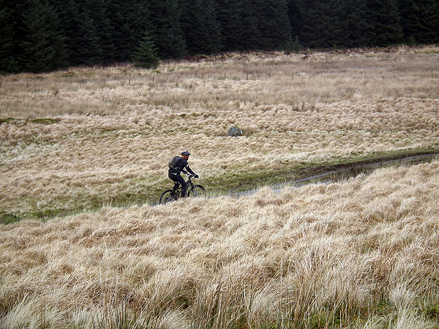 A cyclist heading from Llyn Syfydrin towards Bwlchystyllen