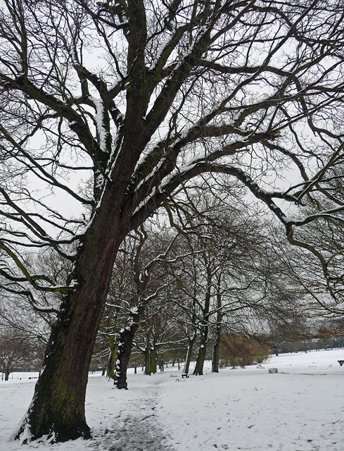Norwood Park (8)