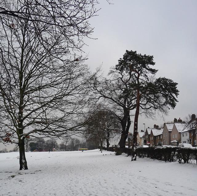 Norwood Park (9)
