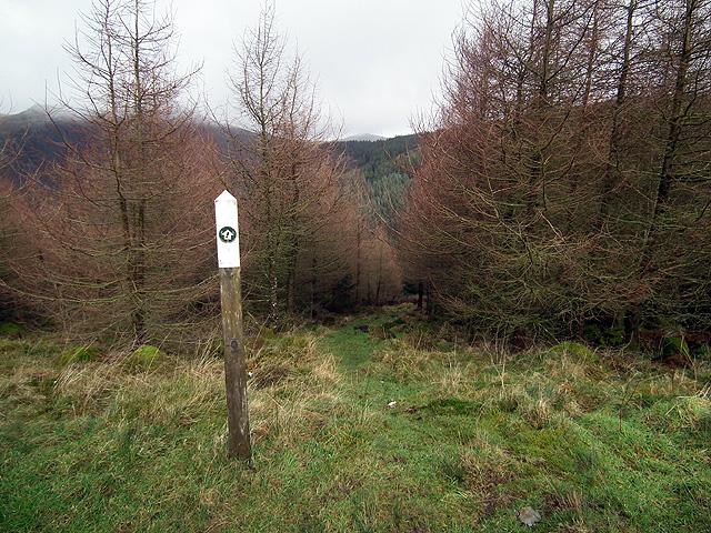 Waymarker for path to Llawr-y-cwm-bach