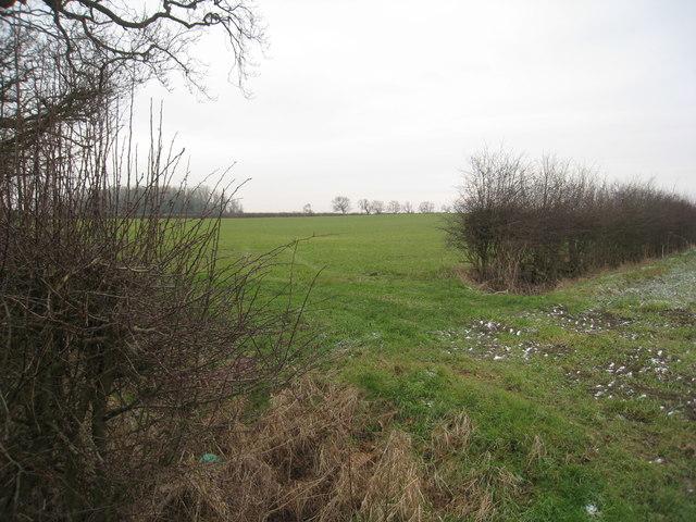 View near Roses Farm