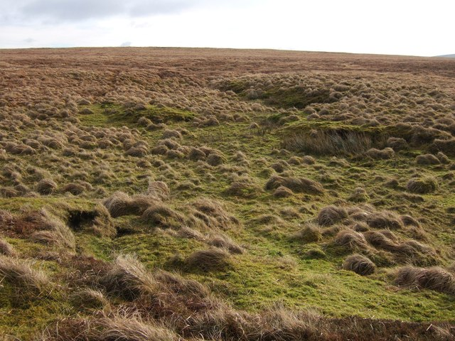 Moorland on Black Hill