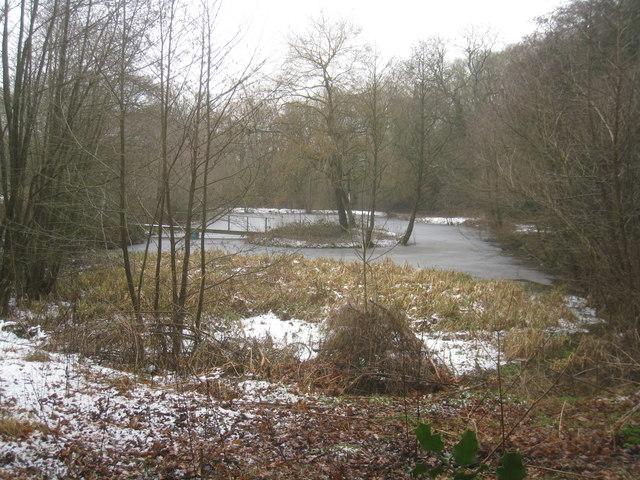 Lake on Turner's Green