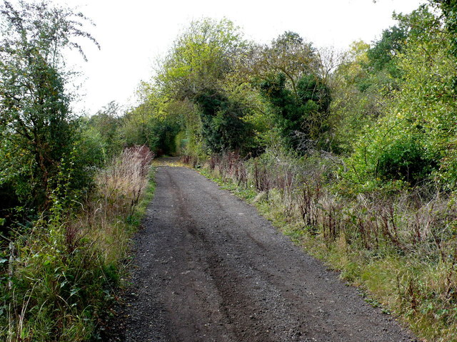 Stoat Lane