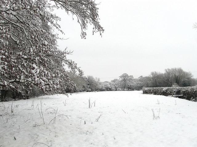 Upper Brook