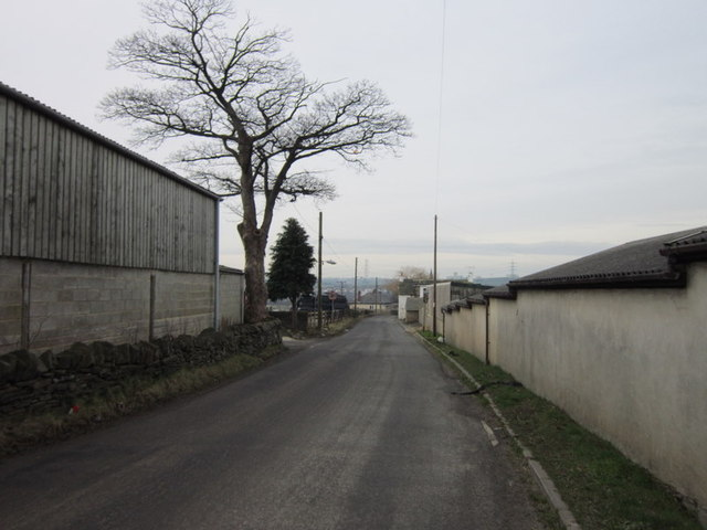 Cliffe Hollins Lane at Lower Chatts Farm