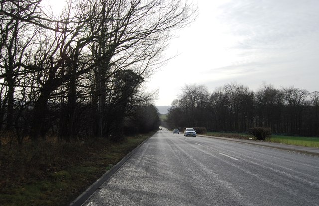 Denby Dale Road approaching Bentley Spring woods