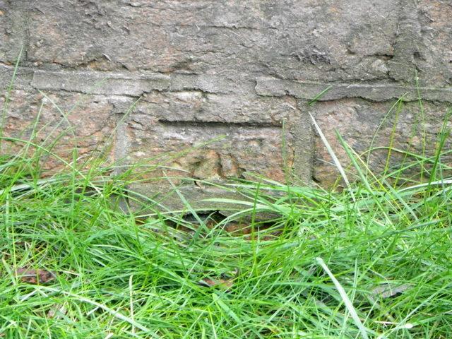 Bench Mark, Bowerchalke