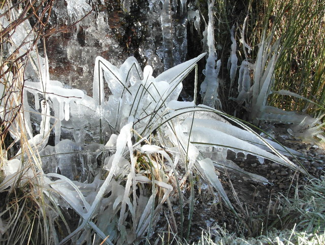 Ice sculptures by the A837