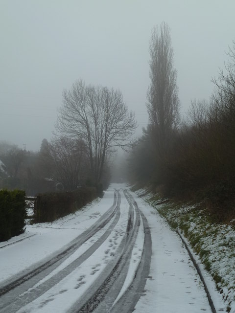 Snowy lane - Swinesherd