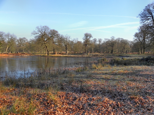 Dunham Park, The Island Pool