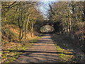 SJ7288 : Trans Pennine Trail, Warburton Bridge by David Dixon