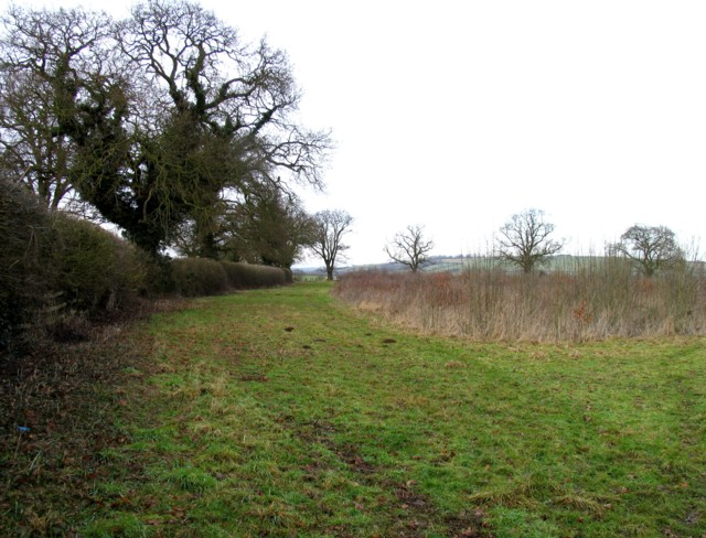 Field along Wire Lane