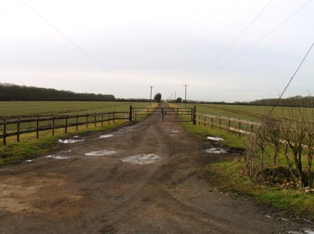 Driveway to Woodlands Farm