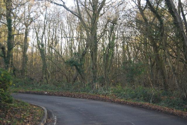 Sharp bend, Hawe Lane